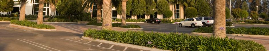 Building & Parking Lot