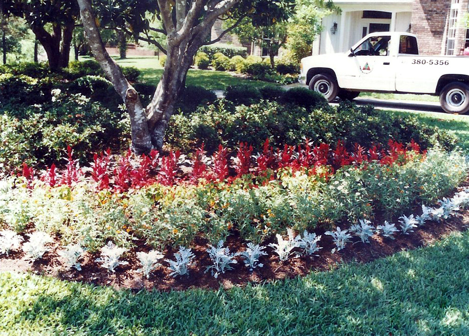 Doyle Land Systems Maintenance and Landscaping