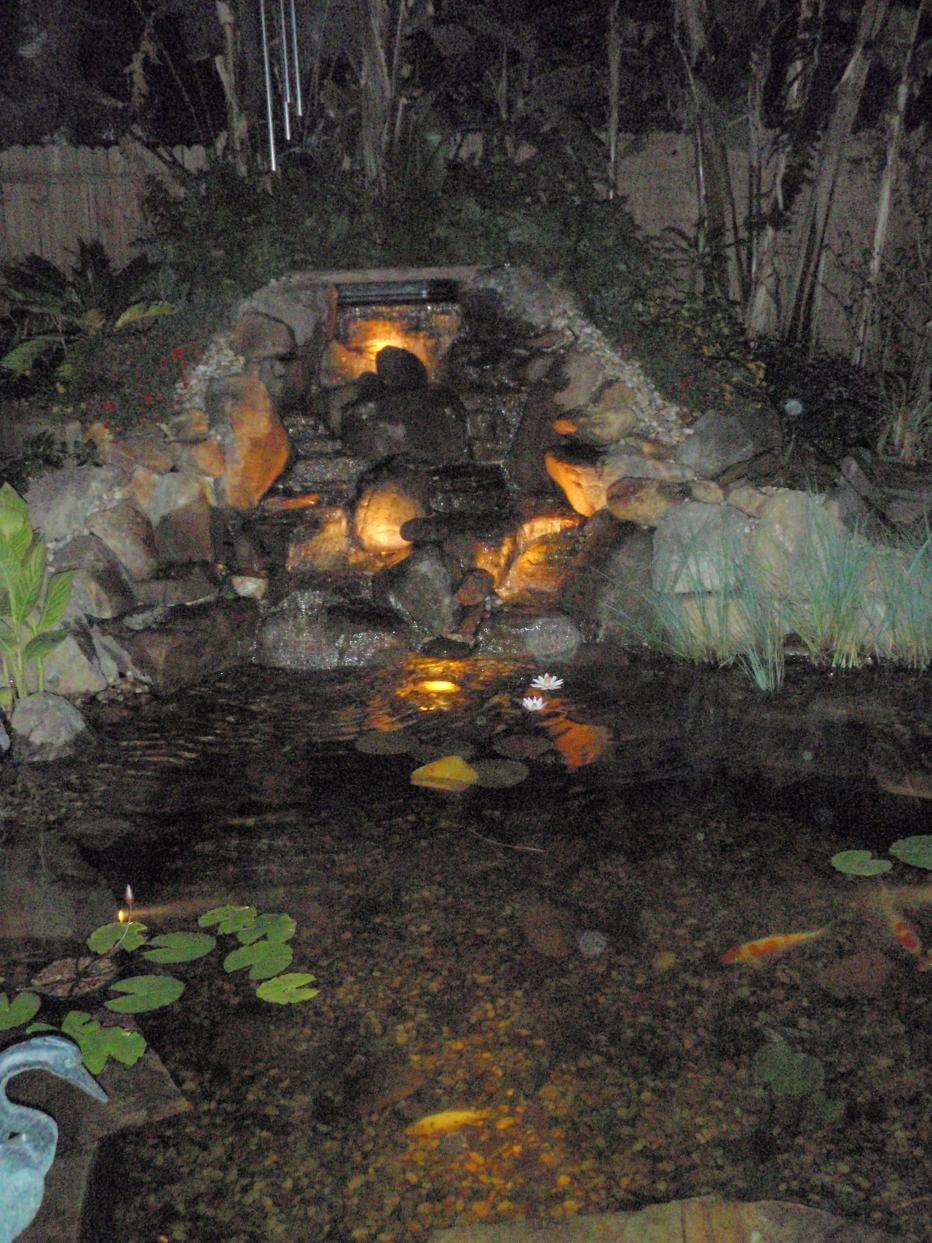 Pond lighting doyle land systems pond lighting for Koi pond lights